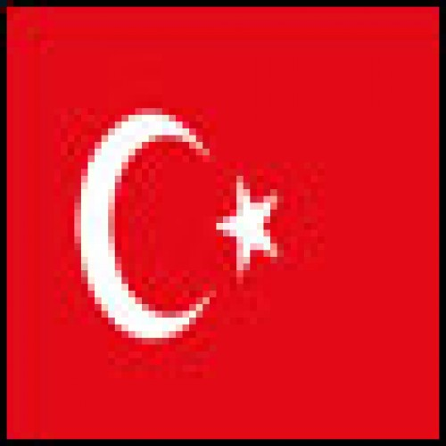 Turkey's ruling party wins election