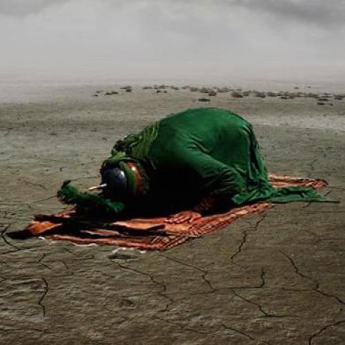 Karbala: The Living Tawheed